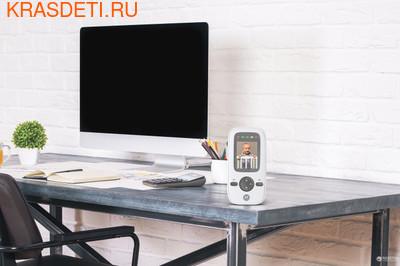 Видеоняня Motorola MBP481 (фото, вид 2)