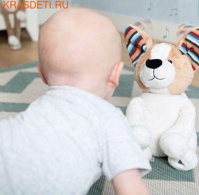 Мягкая игрушка ZAZU для игры в прятки Собака Дэнни 1+ (фото, вид 1)