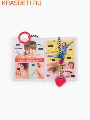 Книжка-игрушка ИЗУЧАЕМ ЧЕЛОВЕКА (фото, вид 1)