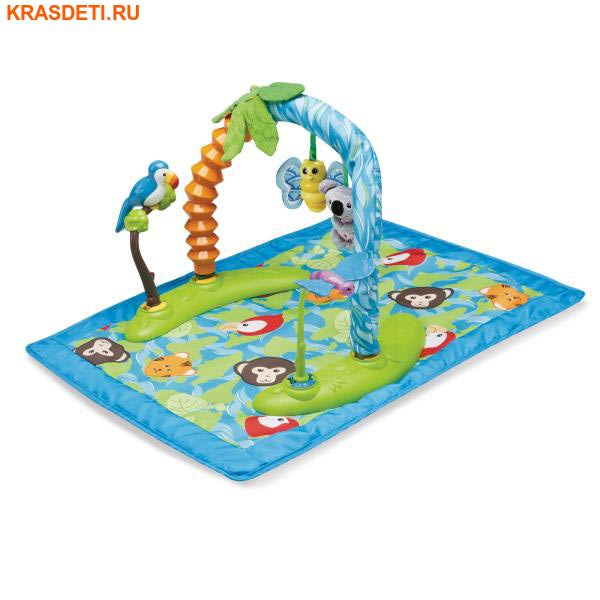 Evenflo Игровой центр ExerSaucer™ Animal Planet (фото, вид 1)