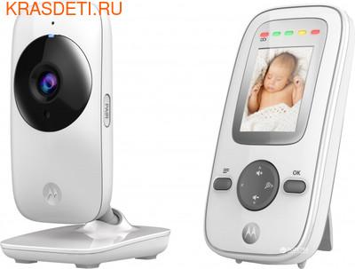 Видеоняня Motorola MBP481 (фото)